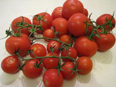 Image : Tomate - Tomates en grappe