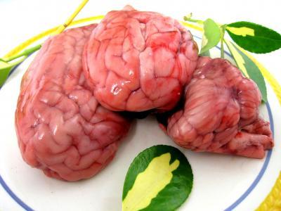 Cervelle d finition et recettes de cervelle - Comment cuisiner la cervelle d agneau ...
